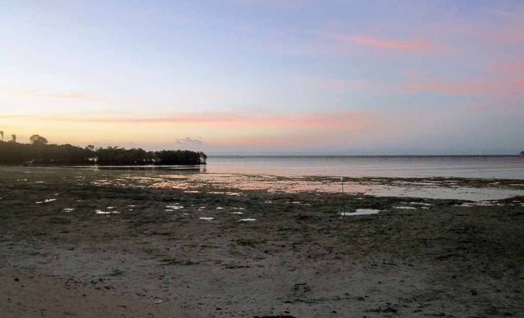 Java Beach Sunset, Pangangan