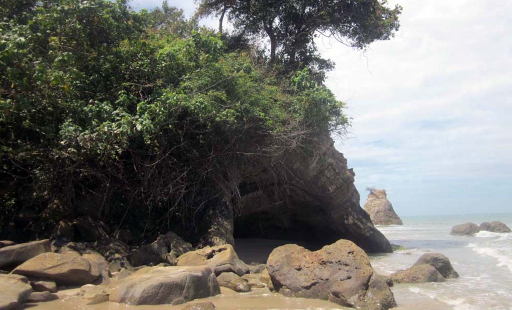 Kuala Penyu Tempurung Seaside Lodge