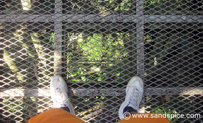 Borneo Rainforest Discovery Centre