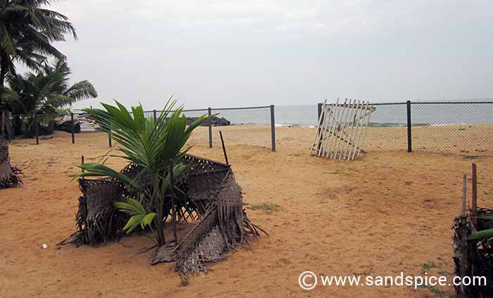 Ceylonica Beach Hotel Negombo