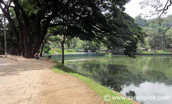 Kandy Lake Comfort