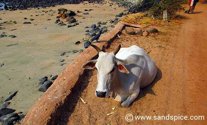 Colomb Beach, Goa