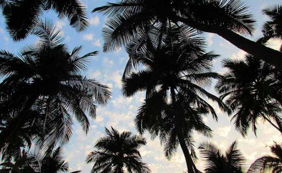 South Goan Beaches