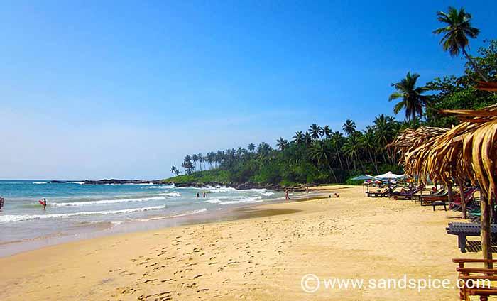 Palm Paradise Cabanas Tangalle