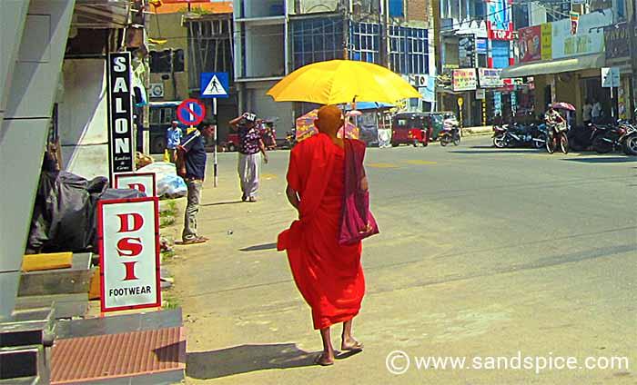 Sri Lanka 21-day Budget & Costs