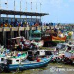 Top 14 Panama City Activities