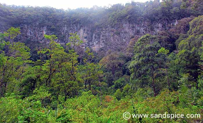 Boquete Mountain Trails