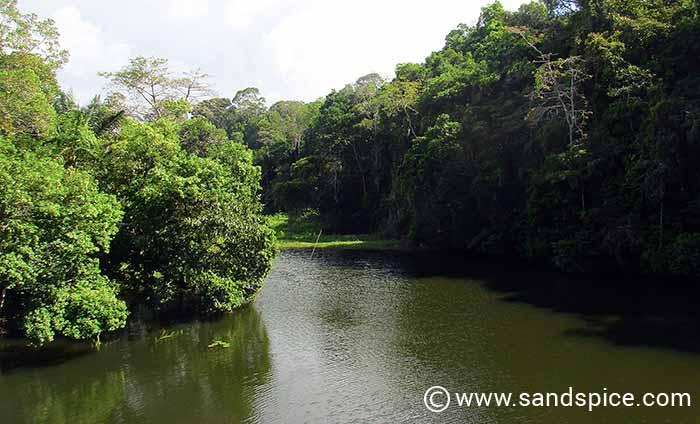 Panama Canal Kayaking