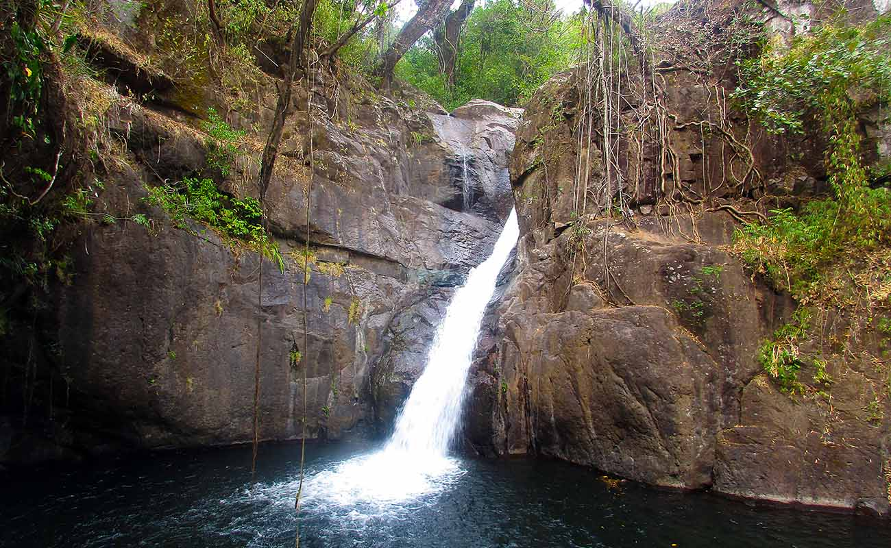 Waterfall Rappeling Boquete Panama