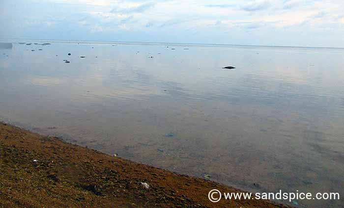 Waru beach doesn't look promising, but is better when seen underwater