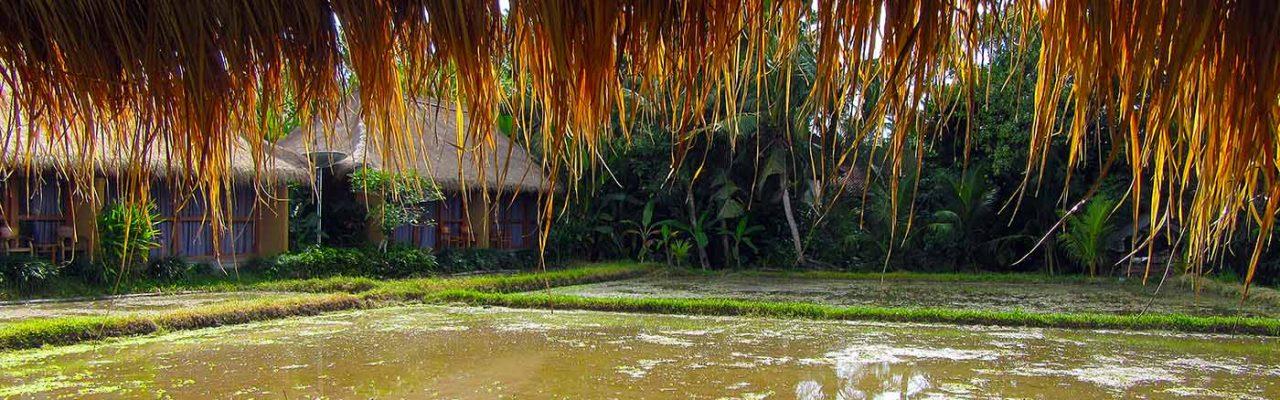 Bali-Lembongan Combination