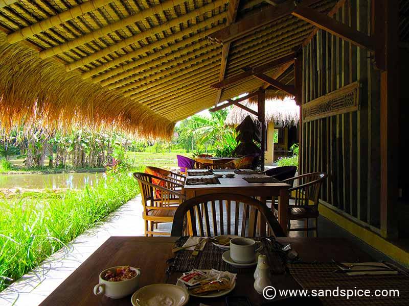 Ubud Bali Hotels