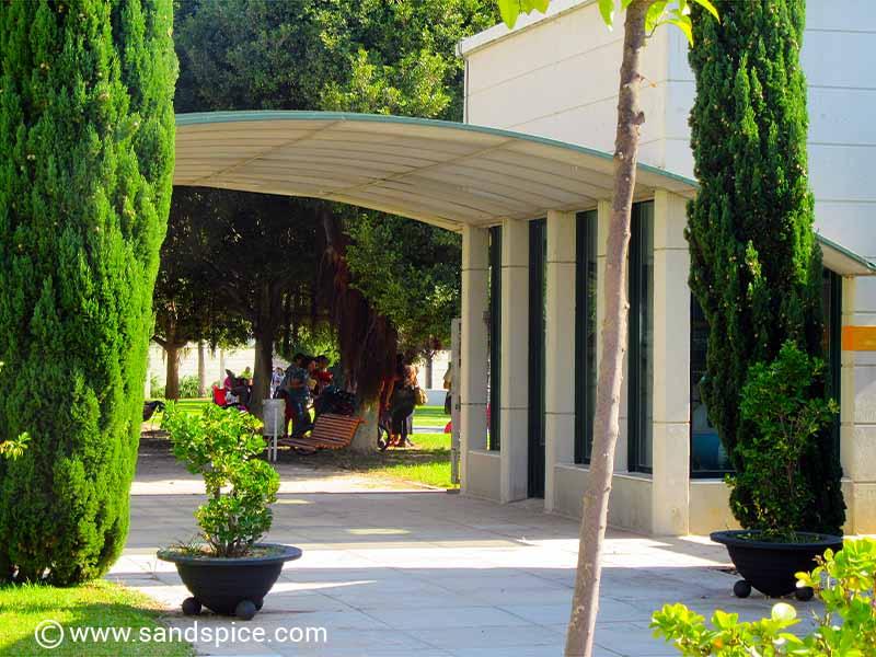 Valencia - Picnics in the Park