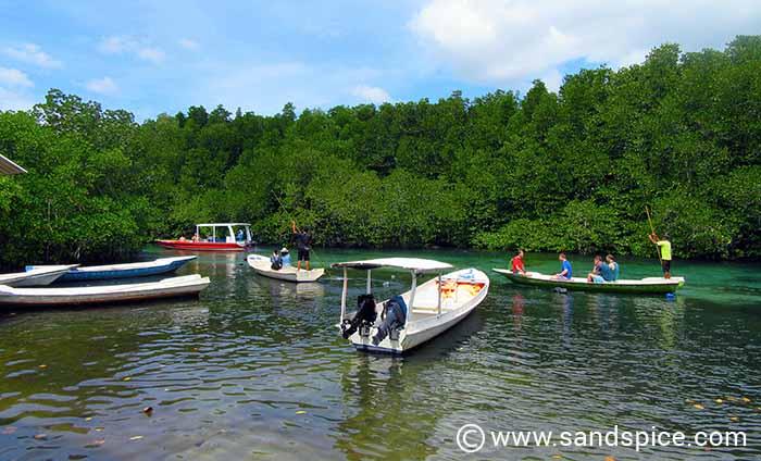 Lembongan Island Beaches - Mangrove Point