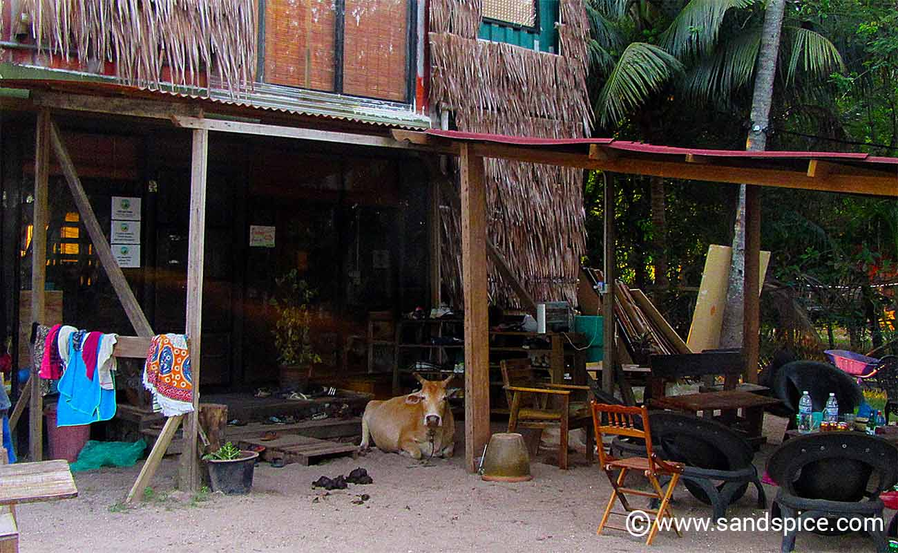 Langkawi Accommodation Options