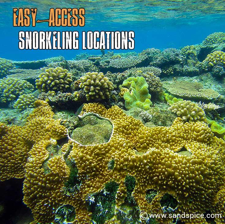 Snorkeling Locations