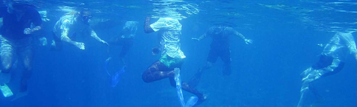 Easy-Access Snorkeling Locations