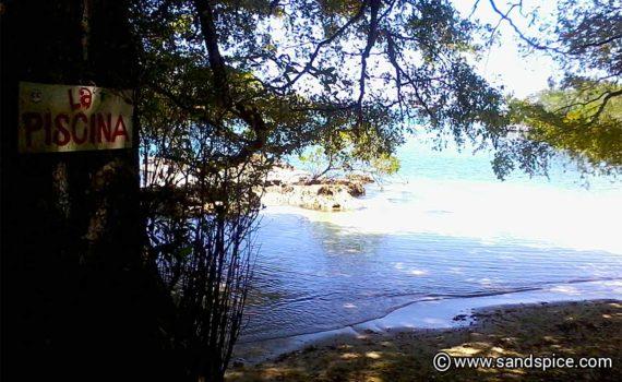 Getting Gringoed in Isla Colon Bocas del Toro